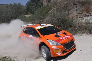 2015-img-CIR-Rally_di_San_Marino-notizie-andreucci_30
